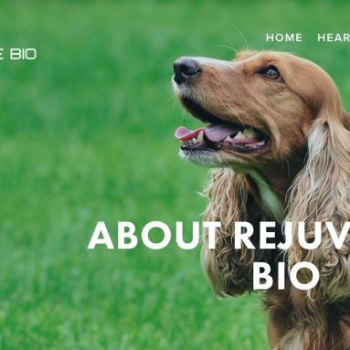 Rejuvenate Bio Has Started Offering Gene Therapy for Dogs